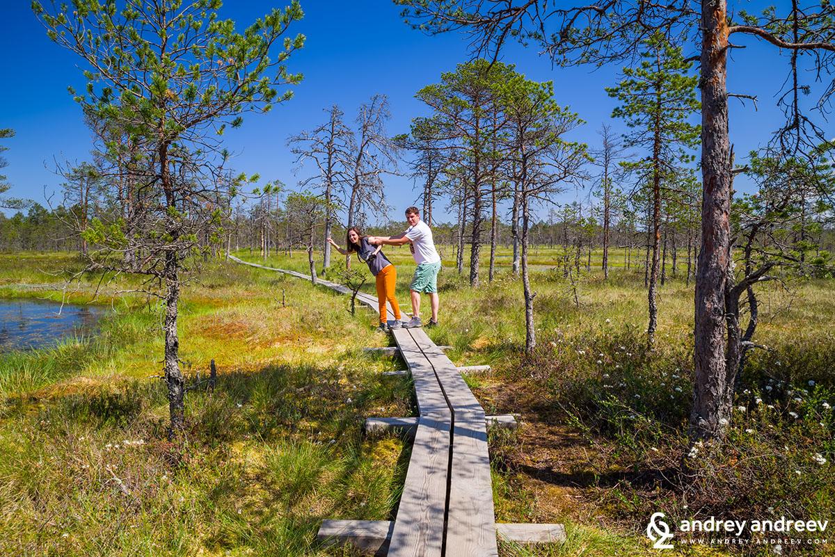 Андрей и Мими в Естония
