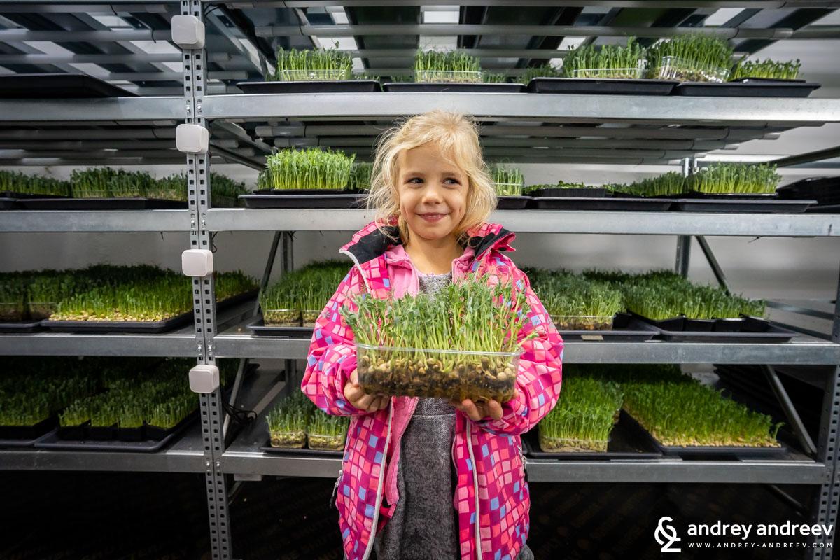 Ани се забавлява с начина, по който се отглеждат микрорастения